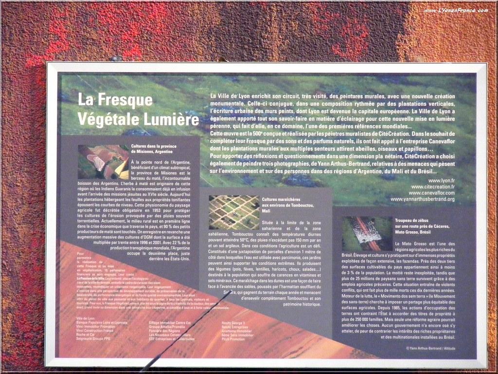 Le mur végétalisé de l'Annonciade