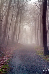 Foggy Morning TM (Jim Dollar) Tags: canon nc tm blueridgeparkway firetowertrail jimdollar moseshconememorialpark