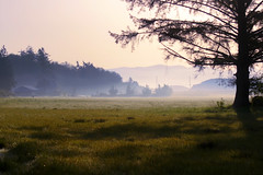Morning Mist (Explored Front Page) (. Jianwei .) Tags: morning mist fam whidbey a500 jianwei explored kemily