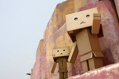 Just over there! (darkmoming) Tags: figure danbo  revoltech jfigure danboard  pentaxsupermulticoatedtakumar24mmf35