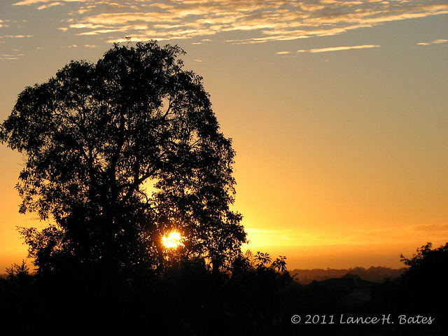 20110502 Sunrise Monday-11