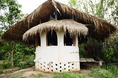 ปัญญาโปรเจค Punya Project (nontiddin) Tags: permaculture organicfarm earthenbuilding บ้านดินเชียงใหม่ ชุมชนพึ่งตนเอง maetangchiangmai