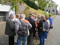 Komentovaná prohlídka parku Denisovy sady, 29. 4. 2011