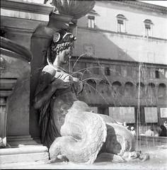 Bologna's Venus !!!! (fondazza1943) Tags: italy tlr rolleiflex venus bologna cz ilford tessar