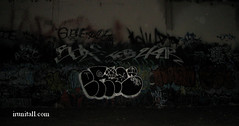 ERIE   R. I. P. (irunitall) Tags: graffiti losangeles al rip tags otr erie graff bombs throwups