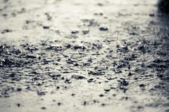 When heaven cries (mrpase) Tags: rain photography heaven crossprocess tamron70200 sonyalpha550