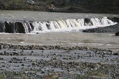 Bendita agua que corrió por el barranco de Maspalomas