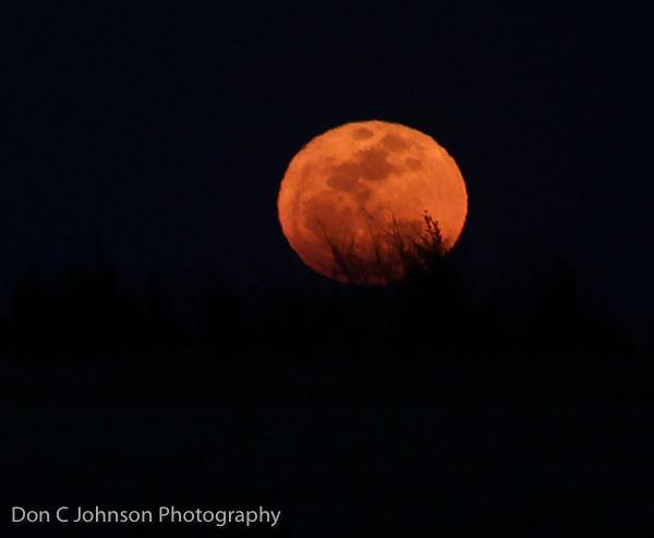 Super! Moon-2218