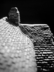Rooftop (babymowgli16) Tags: roof chimney blackandwhite macro mini top20blackandwhite
