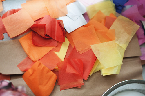 tissue copy