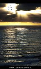 The Days Ahead... (Bruce Wayne Photography (Formerly darth_bayne)) Tags: ocean sunset birds clouds waves sandiego canon350d sunrays 70300mm hdr 11ev darthbayne obsediandawn brucewayneberryjr thedaysahead