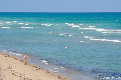 比基尼少女漫步沙滩