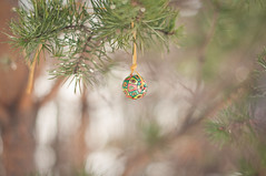 ball of luck (Anete vilpe) Tags: nature colors march spring bokeh fir birthdaypresent nikkor50mmf14 nikond90 bokehwhores bokehholicsanonymous cinnamonrosepresets ballofluck