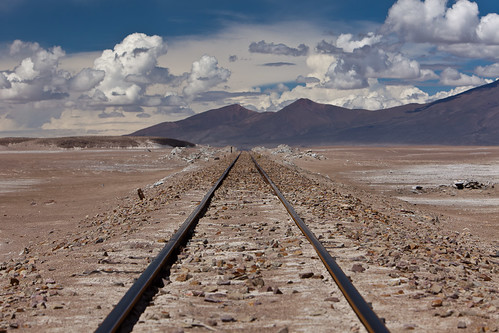 Tracks In the Altiplano #1