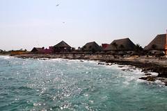 Costa Maya (-eme) Tags: ocean trees sea beach port mexico palm hut costamaya
