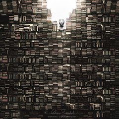 soul in the wall () Tags: portrait music muro andy face wall head andrea cd books andrew panasonic libri musica ritratto faccia testa benedetti lx5