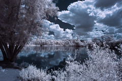 Sweetwater County Park (Infrared) (x-ray tech) Tags: mygearandme mygearandmepremium