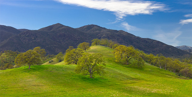 Hills near Paskenta
