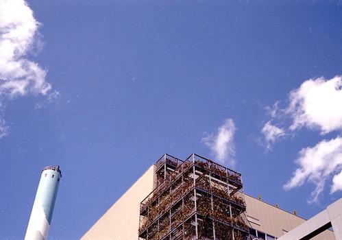 世田谷市場の青空