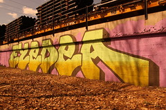 eyedea ({ tcb }) Tags: wall train graffiti graff eyedea eyedeamemorial