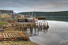 Low Tide (gwhiteway) Tags: travel canada tourism rock newfoundland tide low wharf