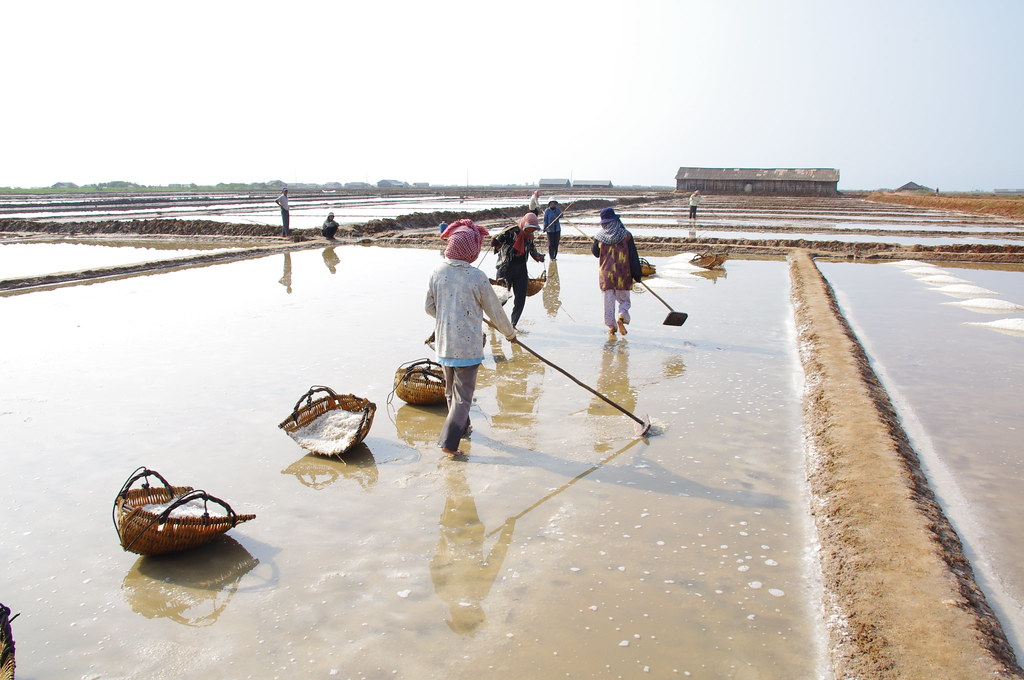 Salt workers in Kampot.