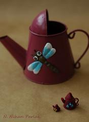 Let's water! (Nihan Parlak) Tags: wateringpot polimerclay