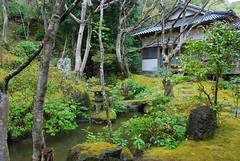 DSC_0486 (yhshangkuan) Tags: japan spring kyoto blossom arashiyama bloom  cherryblossom sakura   fullbloom 2011  tenryujitemple jojakkojitemple