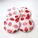strawberry fridge magnet