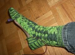 Crocodilian Socks - Sock 1 heel