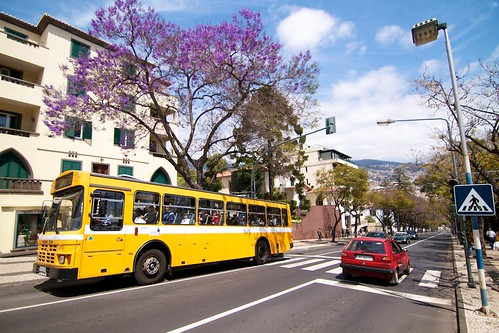 Bus in Funchal, Madeira