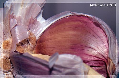 Con aroma de Ajo II by Javier Marí- avionseivissa