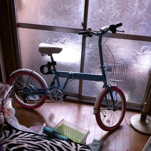 自転車完成、家の中へとりあえず。