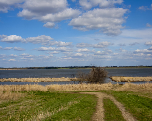 04112011JGW-EmiquonWetlandAccess_MG_5457