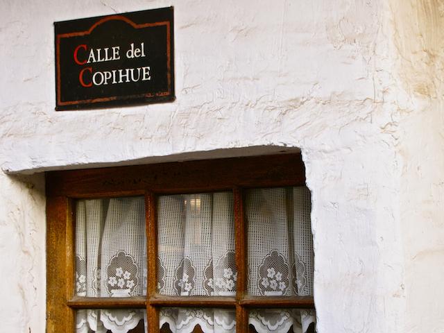 Calle del Copihue