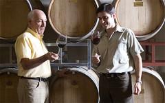 Desde Alfredo Roca destacaron que los vinos de la nueva añada «sobresalen en todas sus aristas»