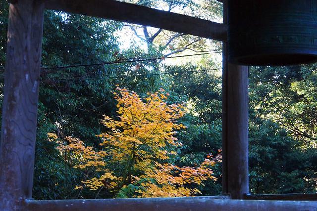 20101121_082524_吉野山_如意論寺