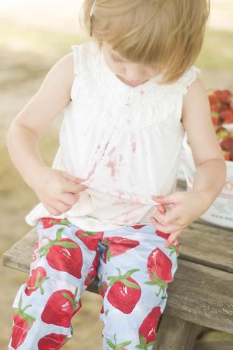 strawberry pickin'_0018