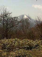 鼻曲山(小天狗)から浅間山