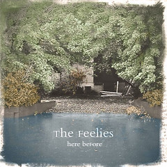 The-Feelies-Here-Before[1]