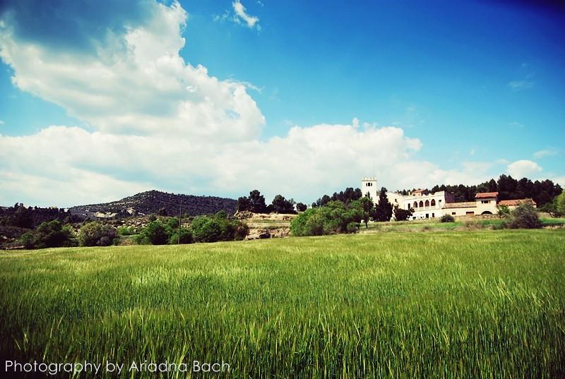 2011-04-17 Manresa-Castellgali-Manresa 16km (36)