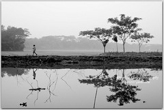 A misty Morning (Ehtesham Khaled [www.ehteshamkhaled.com]) Tags: camera morning bw reflection art water misty lens nikon media walk dhaka khaled ehtesham bangladesh bangla advertise bangali banga a sham619 gettyimagesbangladeshq3