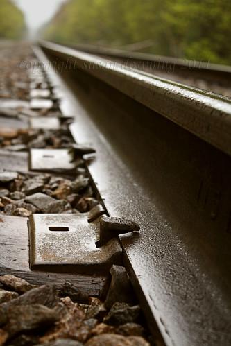 Rails {267/365}