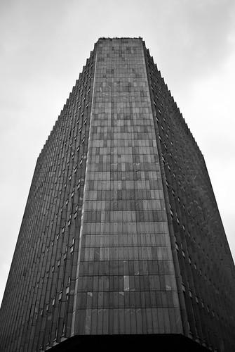 On a gray sky