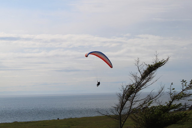 Paraglider at Fort Ebey State Park