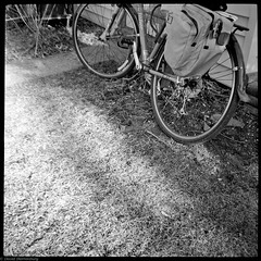 365 on film 2011 04 12 - #080 (DavyRocket) Tags: bw usa sunlight film oneaday bicycle analog diy lomo lomography kodak iso400 toycamera 400tx scan milwaukee photoaday diafine dianaf wi pictureaday pannier trix400 2011 9000ed project365 365project nikonsupercoolscan