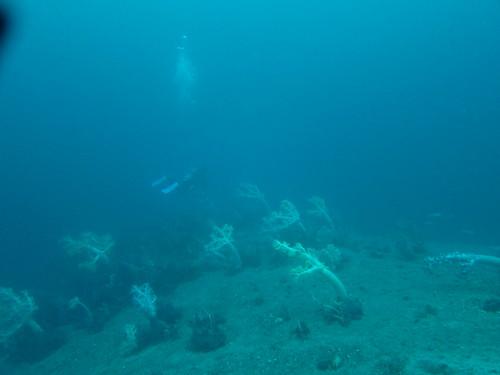 水深35m