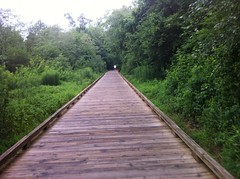 Suwanee Creek Greenway Boardwalk