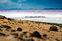 "spiral jetty (Scott Stringham ""Rustling Leaf Design"") Tags: cloud lake storm mountains nature water weather clouds canon landscape spiral island photography utah sand view desert earth salt windy greatsaltlake lookatme miles rebelxt gsl thegreatsaltlake greatbasin stringham spiraljetty inlandsea pacificflyway flightsoffancy scottstringham rustlingleafdesign rustlingleaf wwwrustlingleafdesigncom ourgreatsaltlake"