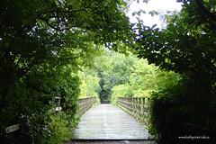 e keswick rail trail 2 (Simon -n- Kathy) Tags: keswick england lakedistrict lakelands hike rain walk castlerigg